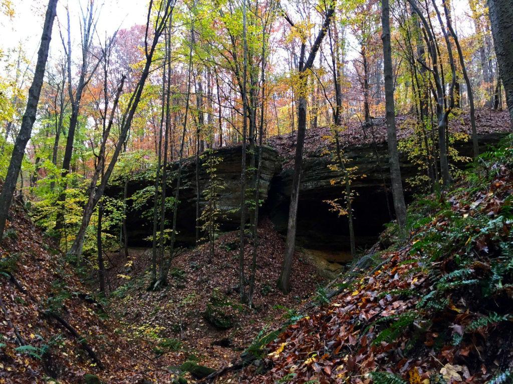 Canopy Ridge Cabin Private Hiking Trails